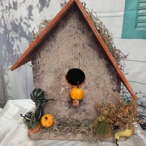 Happy Fall Yall birdhouse