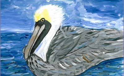 Pelican on the Water Mohamad